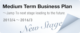 Medium Term Business Plan